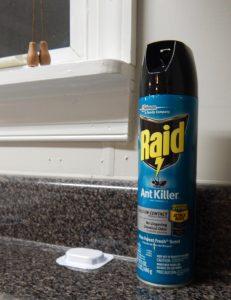 Raid can